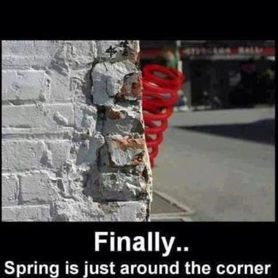 I see spring!!!!